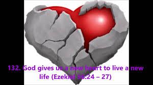 47.New_Heart